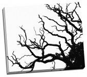Copac dezgolit