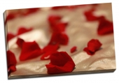 Petale de trandafiri