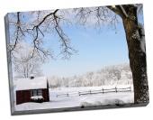 Împărăţia zăpezii